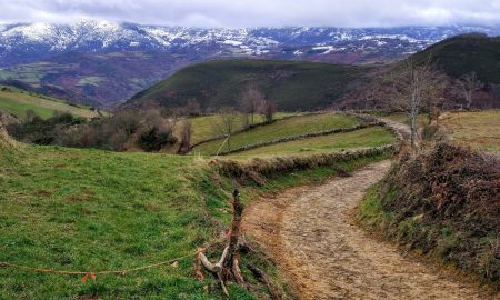 Camino de Santiago in Wheelchair